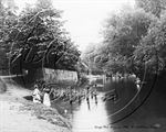 Picture of Berks - Wargrave, Camps Pool c1910s - N1430