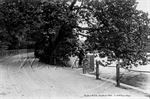 Picture of Berks - Sandhurst, The Drive & Lake c1900s - N2467
