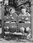 Picture of Misc - In the Stocks c1890s - N1454